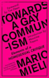 Towards a Gay Communism