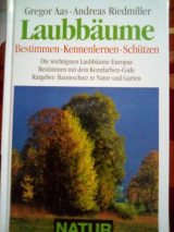 Laubbaume