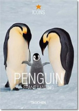 Penguin (icons) (3822824151)