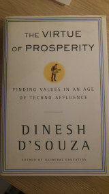 The Virtue of Prosperity : Finding Values In An Age Of Techno-Affluence