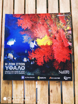 Explore Nature - Υπέροχη Ελλάδα - Η ζωή στον Υφαλο - Αβαγιανός Γιώργος